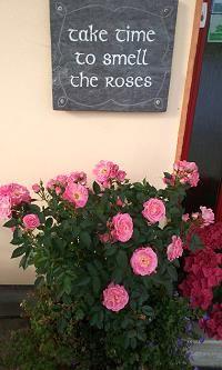 Prenez le temps de sentir les roses